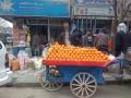oranges kabul