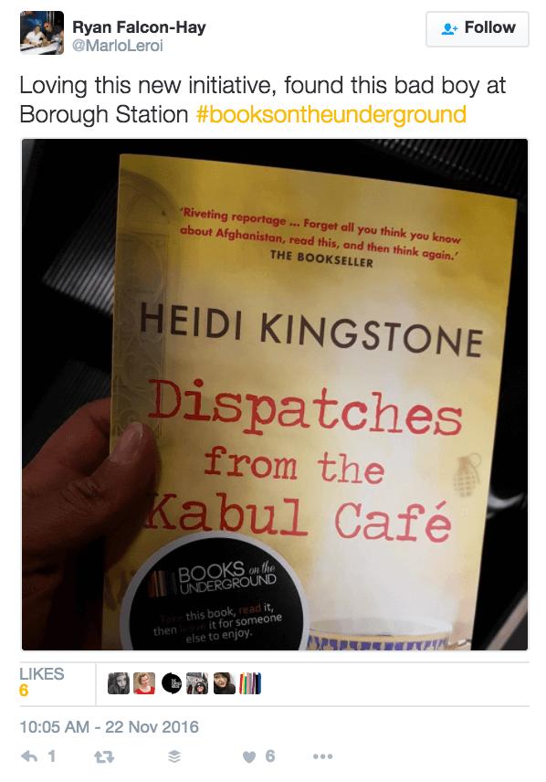 heidi kingstone